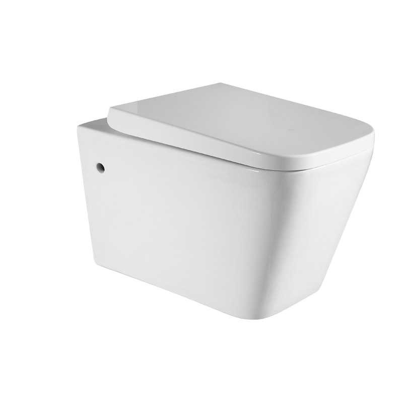 Wall Hung Toilet Type S