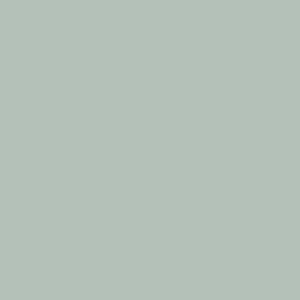Carrera Mint