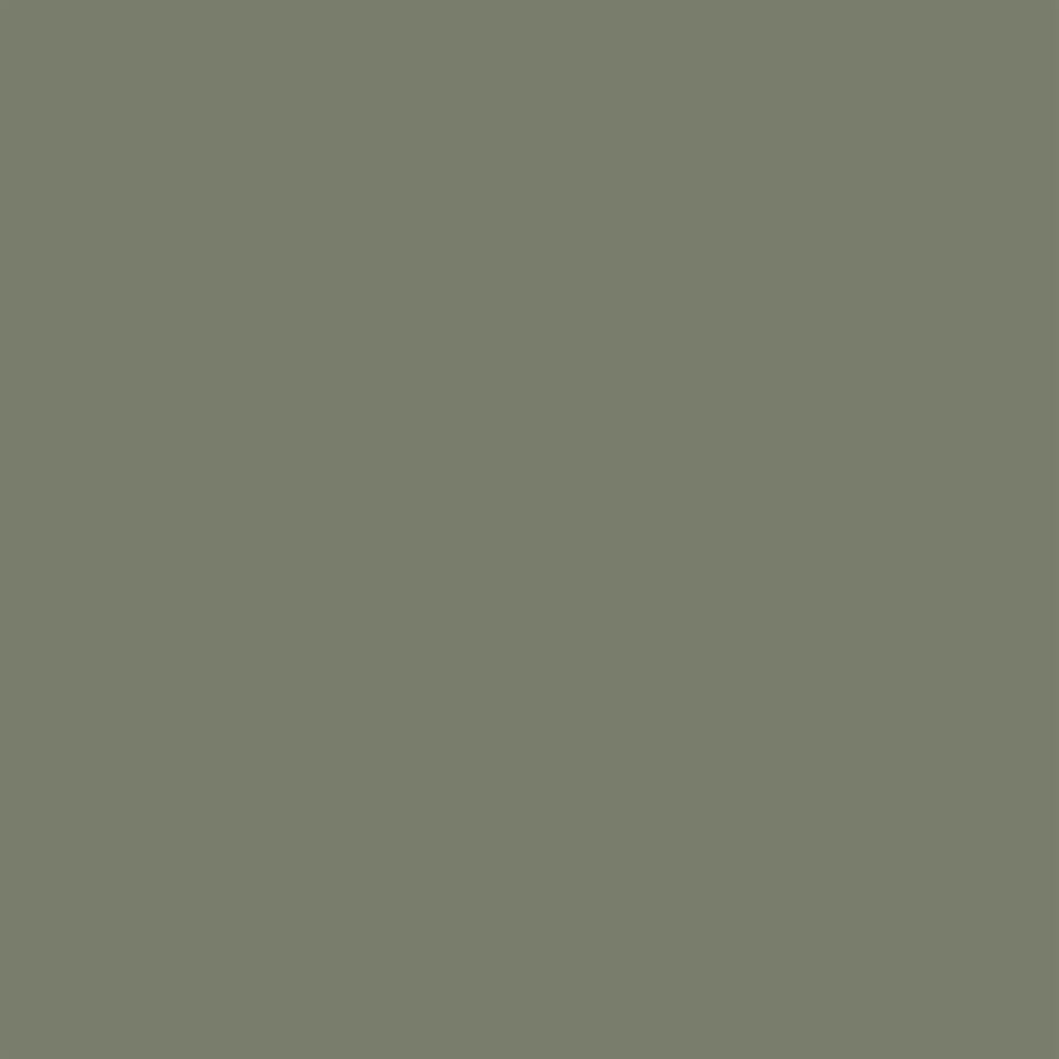 Carrera Olive