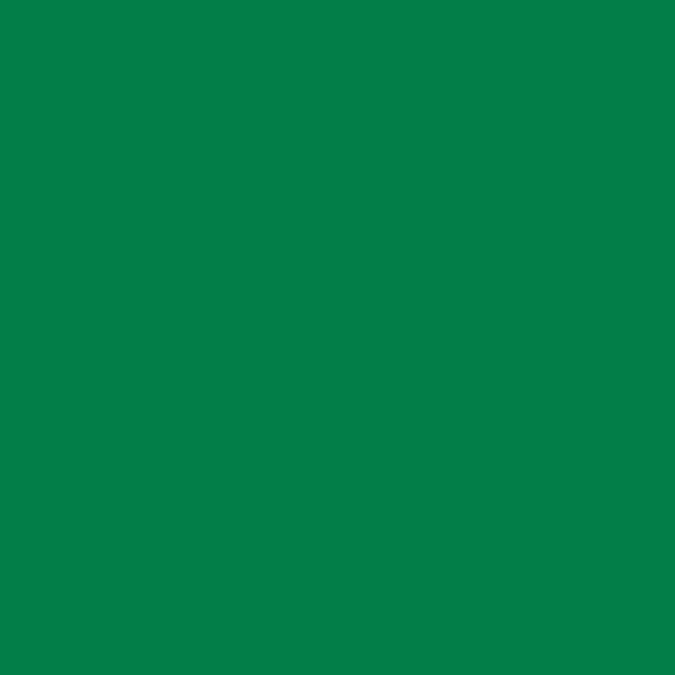 Carrera Picture Green
