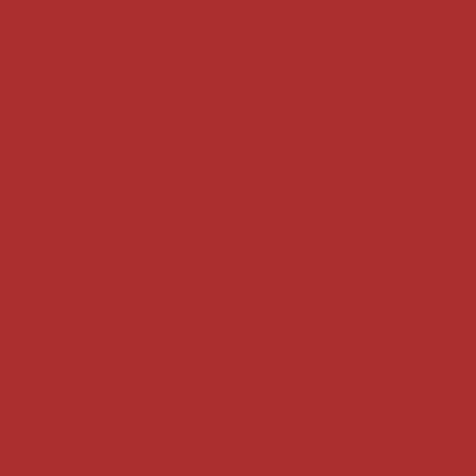 Carrera Red Rose
